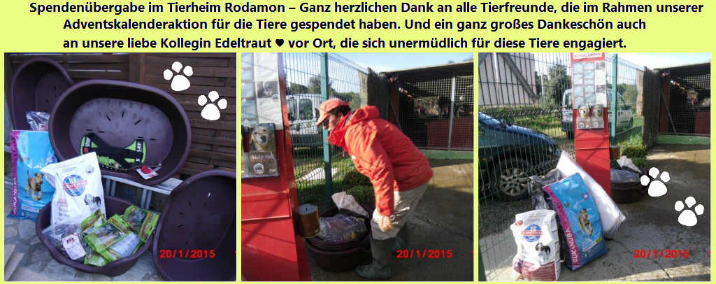 spendenübergabe-collage-rodamon